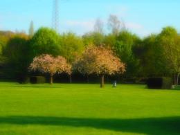 Landschaftspark Bruckenwasen